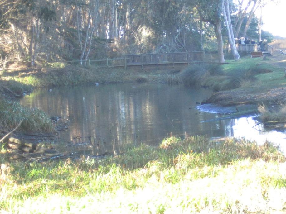 Sweet Springs Nature Preservie