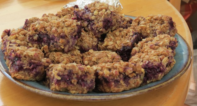 Blueberry granola bars