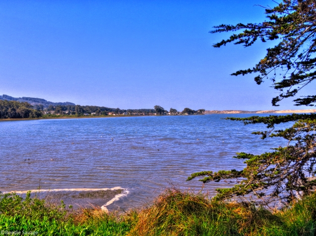 The Back Bay - HDR Photography