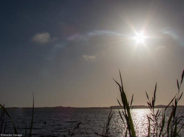Solar Eclipse West Coast