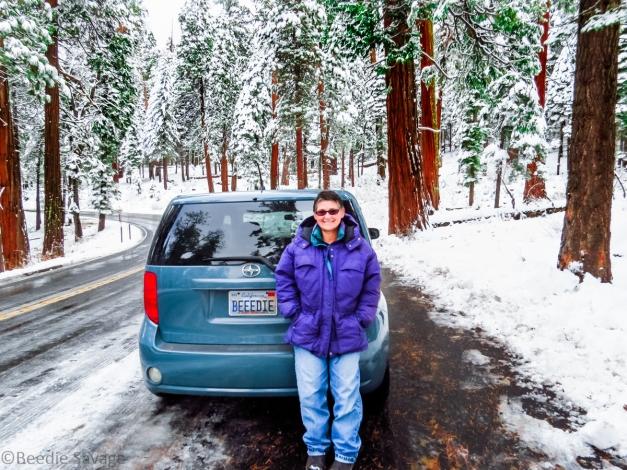 Beedie in Yosemite National Park