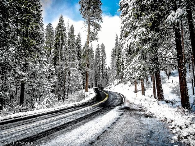 Icy Yosemite Highway