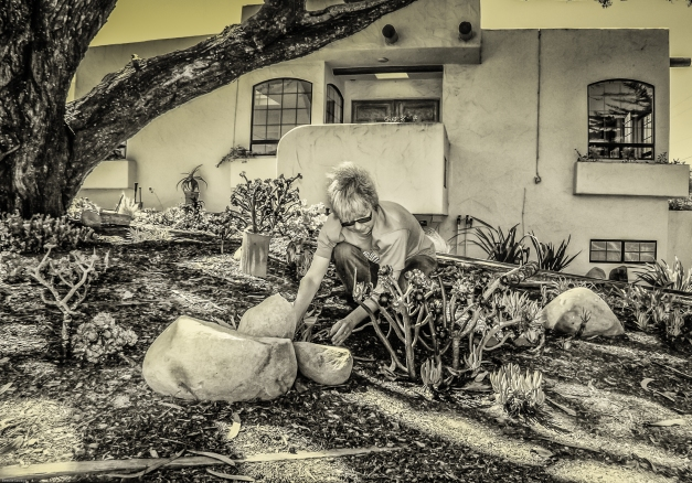 The Gardener - HDR photography