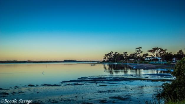 Morning Sunrise on the Bay